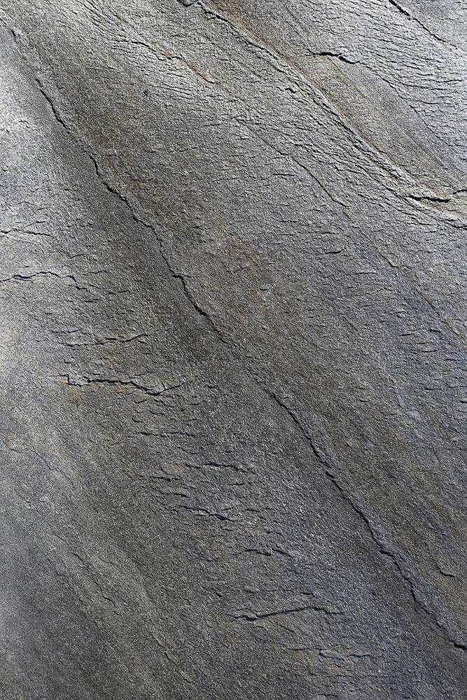 AxolotlStone_Ellora4.jpg