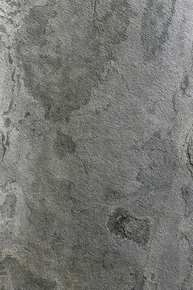 AxolotlStone_Petra3.jpg