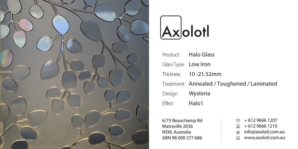 Axolotl_Halo_Wysteria.jpg