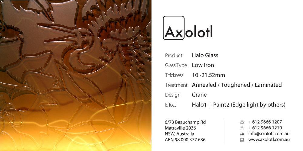 Axolotl_Halo_Wysteria_Light(2).jpg