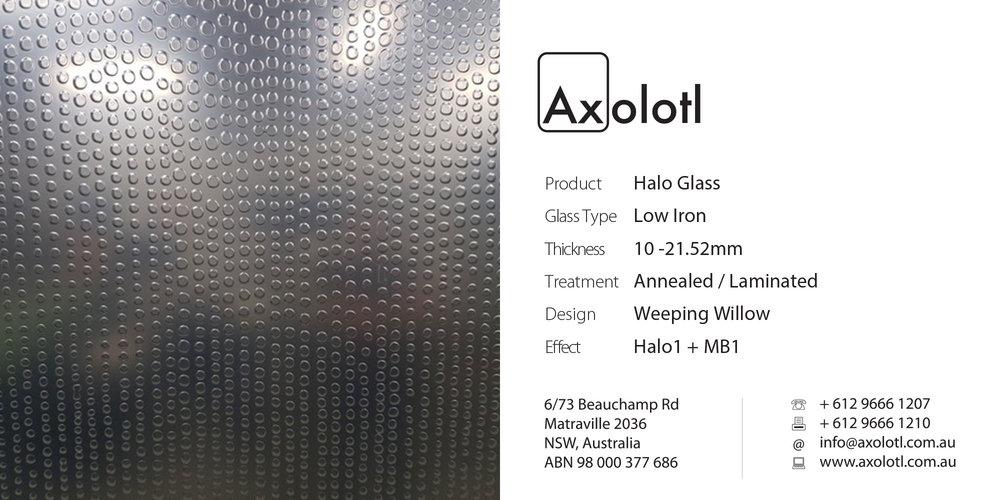 Axolotl_Halo_WeepingWillow.jpg