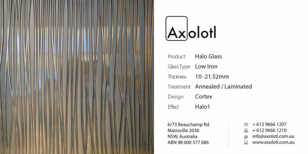 Axolotl_Halo_Cortex.jpg
