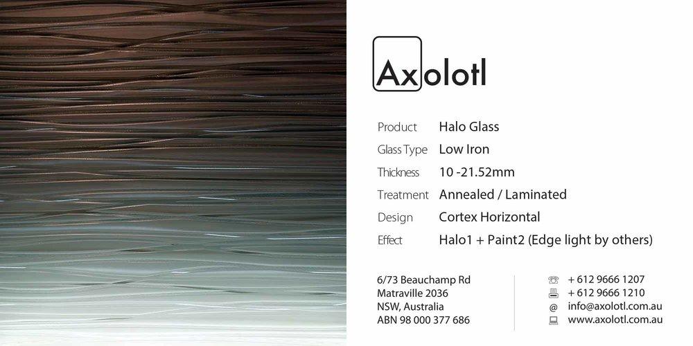 Axolotl_Halo_CortexHorizontal.jpg
