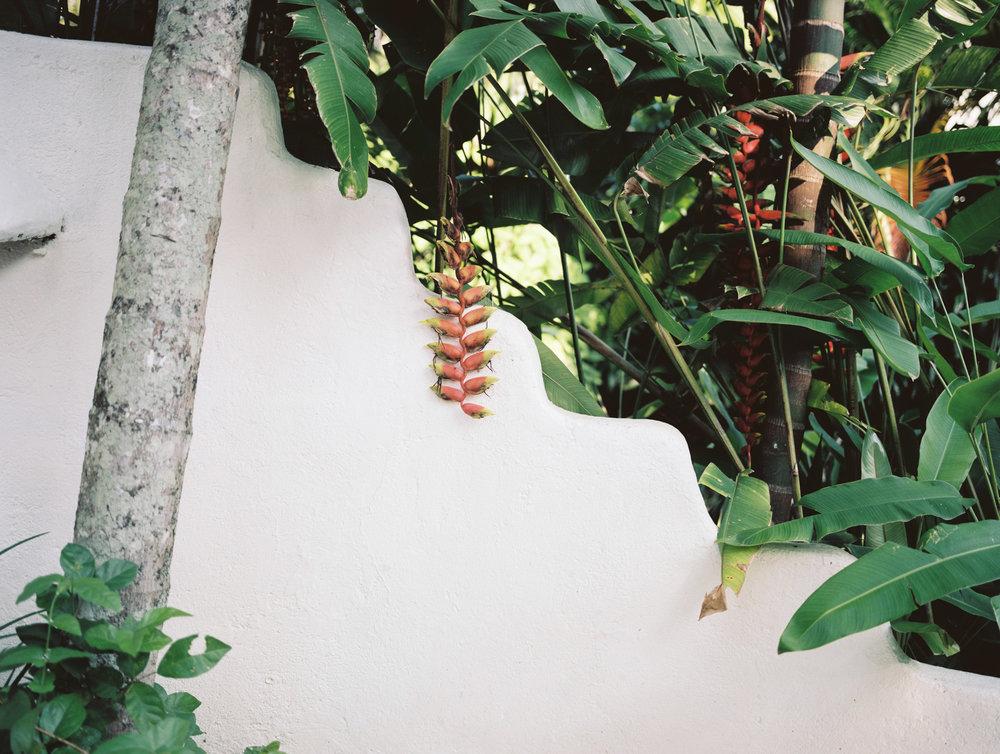 Bali (6 of 1)-3.jpg