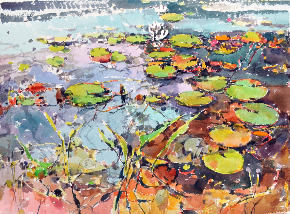 "Lily Pads, Late Fall,  William Chickillo, 22"" x 28"" watercolor"