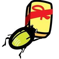 Anomala Beetle