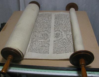 Alexander Torah1.jpg