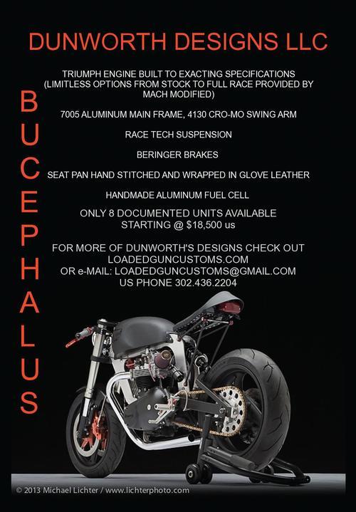 Bucephalus Ad.JPG