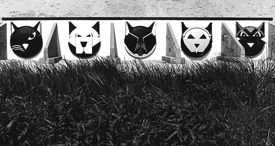 LA River Cats.jpg