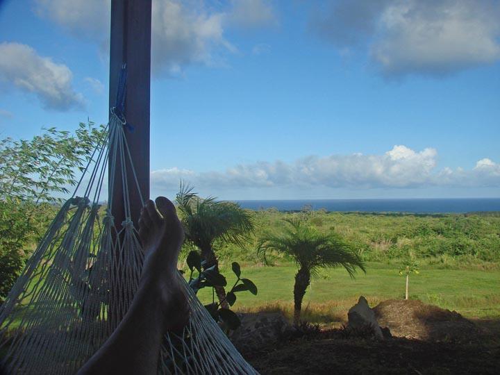 14_Ocean View from Hammock.jpg