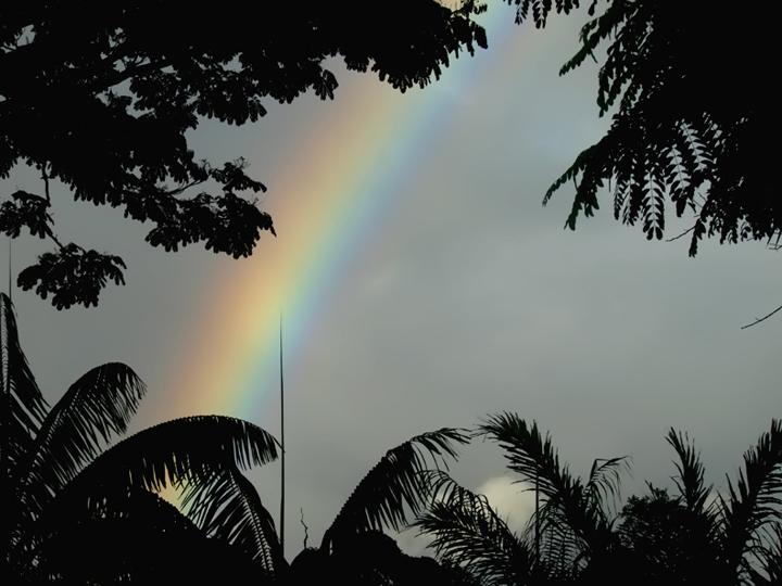 00_Rainbow.jpg