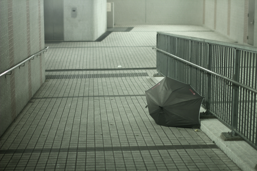 usagi_typhoon_hongkong_2013_by_desirevandenberg_img_5413.jpg