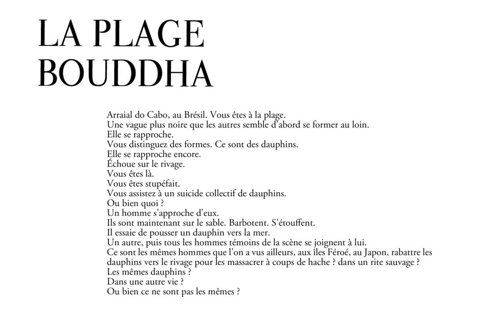 BUDDHAbeach.png