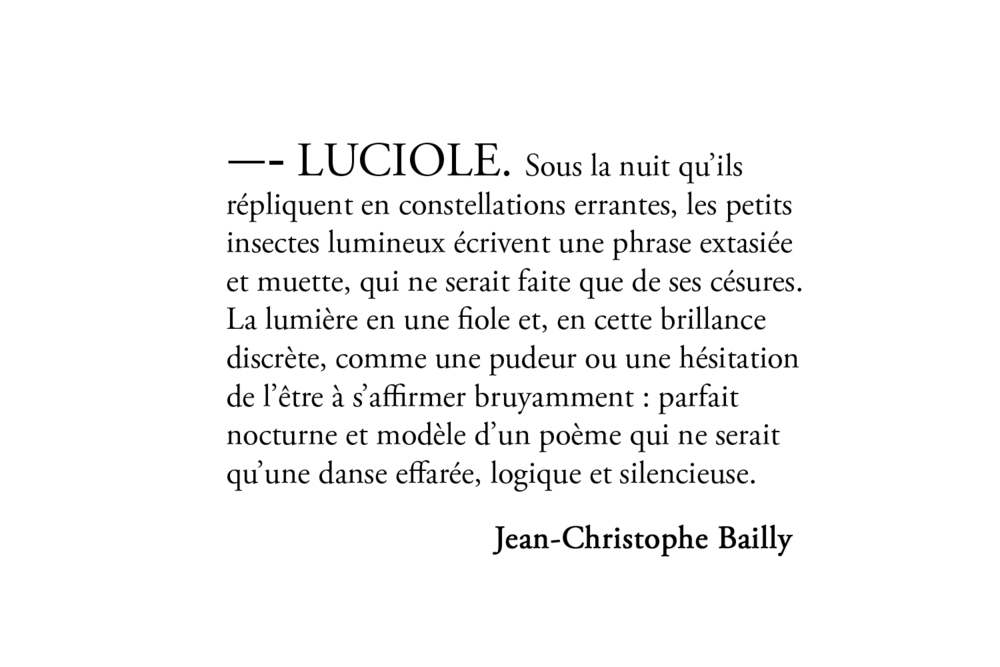 luciole-bailly.png