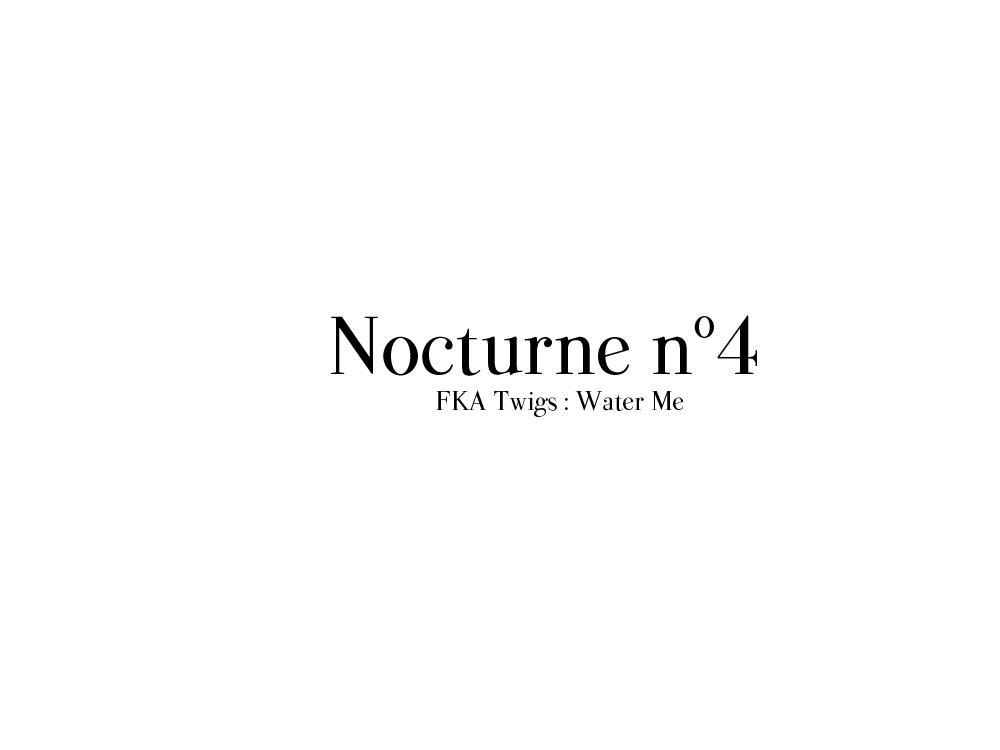 nocturne4twigs.png