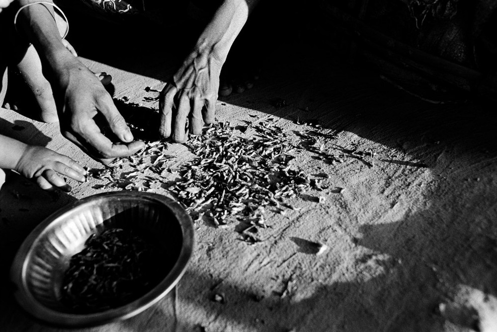 Une femme prépare un bouillon avec les carcasses de crevettes qu'elle a trouvées sur le sol d'un marché. Elle nourrira sept enfants avec.  © Greg Constantine, Exiled To Nowhere