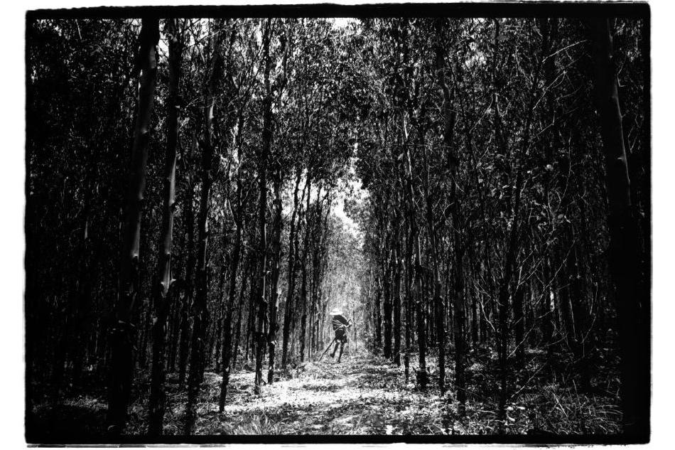 Chine, Wuchuan, 17 juin 2007. Un vieil homme collecte du bois. Il vit seul dans le village. Sans eau potable ni électricité. Il ne veut pas le quitter.    Kosuke Okahara , Vanishing existence.