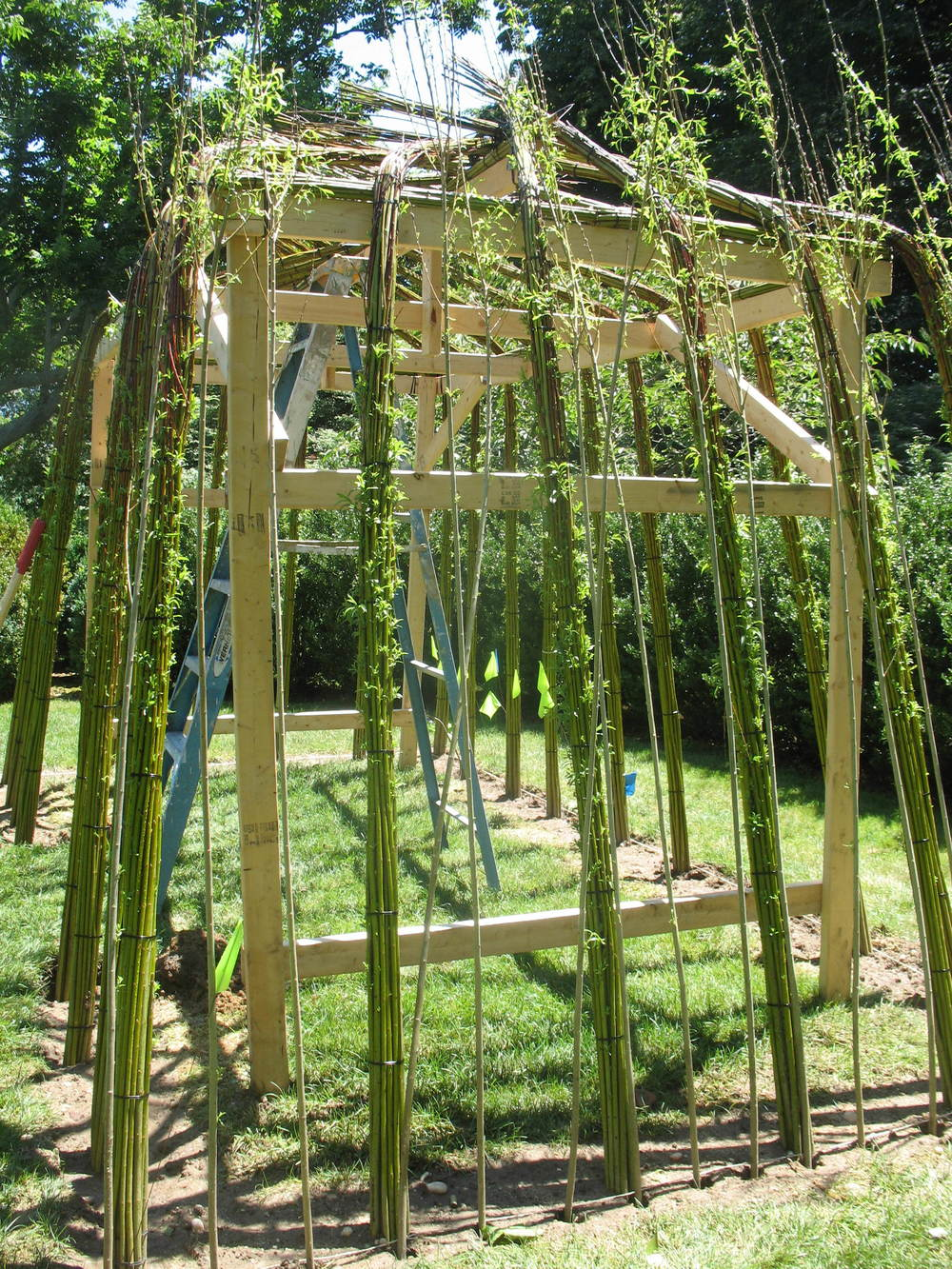 how to make living willow structures