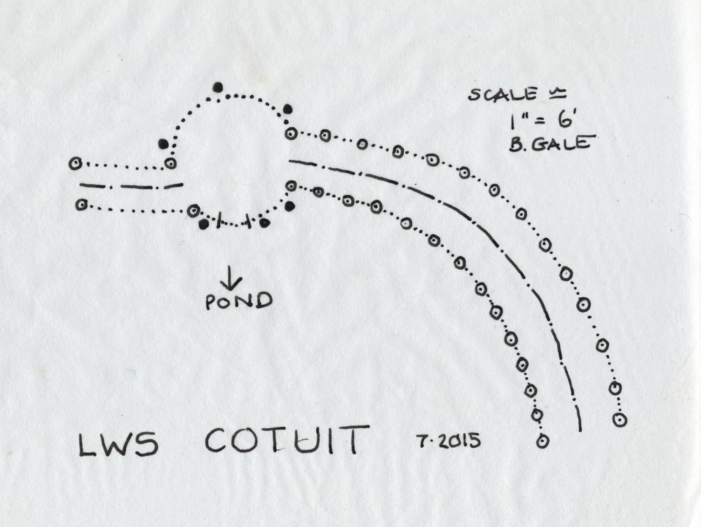 Cotuit plan revised 001.jpg