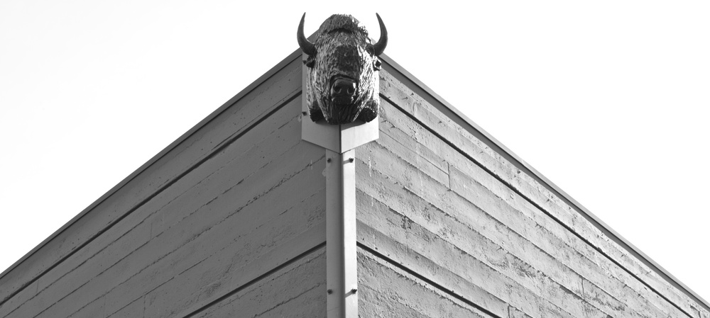 bison_building_william_kaven