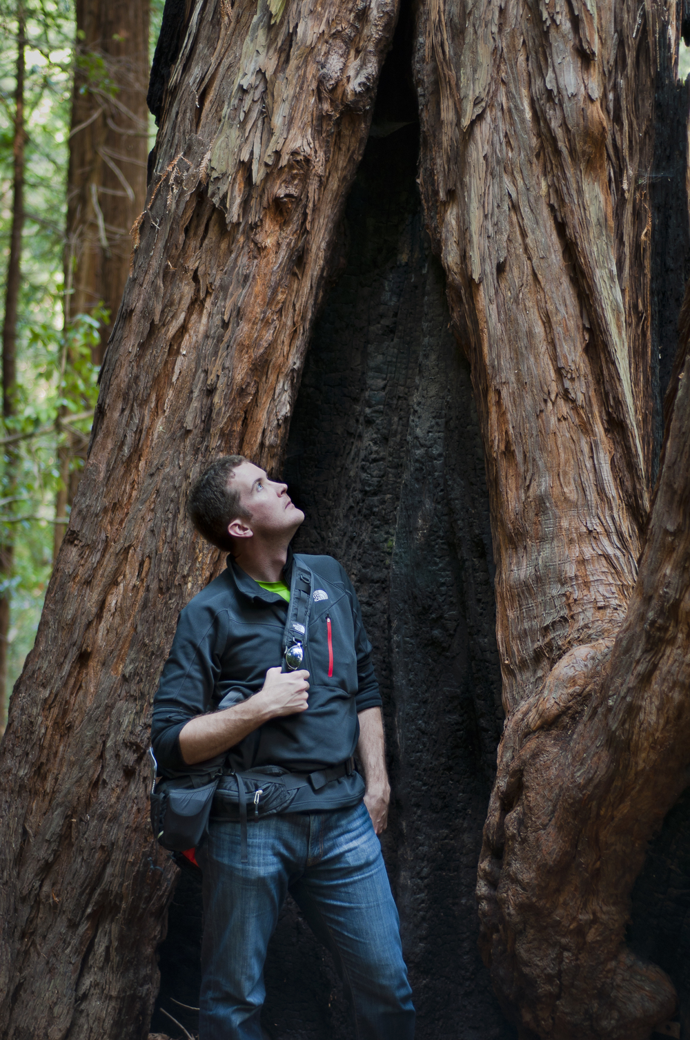 Me in Muir Woods
