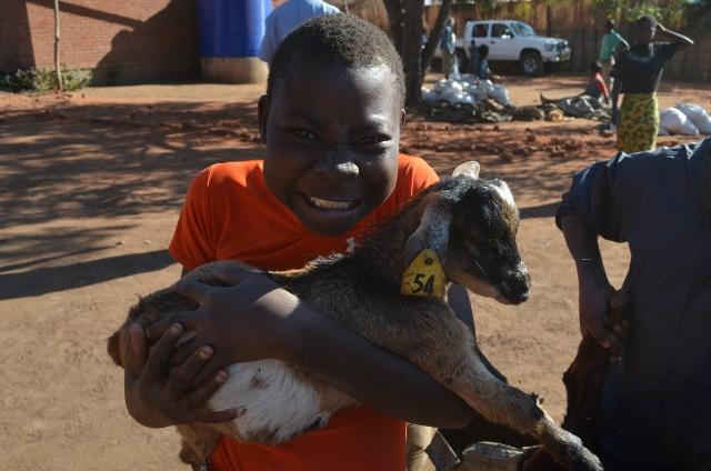 mau and goat (640x424).jpg