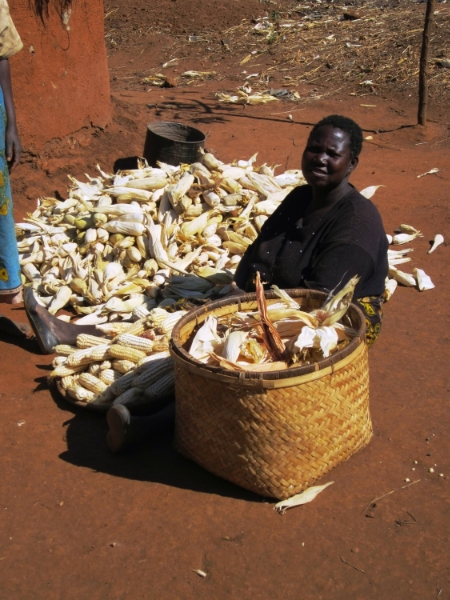 A mother pulls the husk off the corn before shelling it.