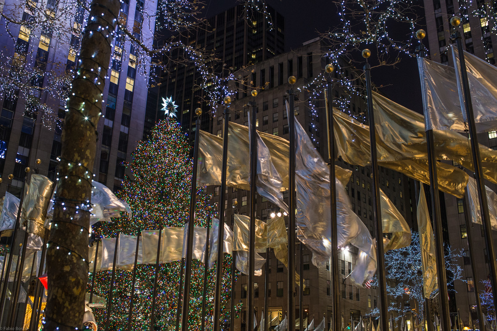 The Rockfeller Center tree