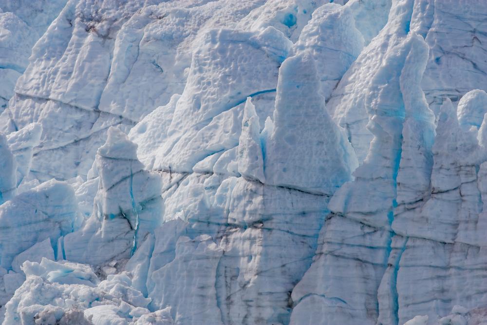 The face of McBride Glacier. Glacier Bay National Park, Alaska.