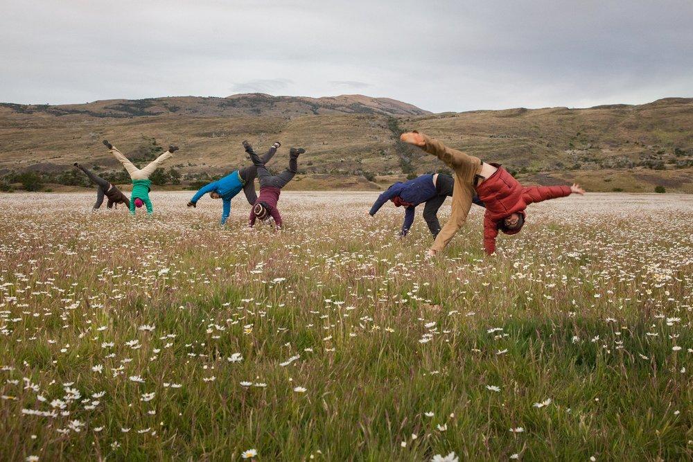 Cartwheels through daisies in Patagonia.