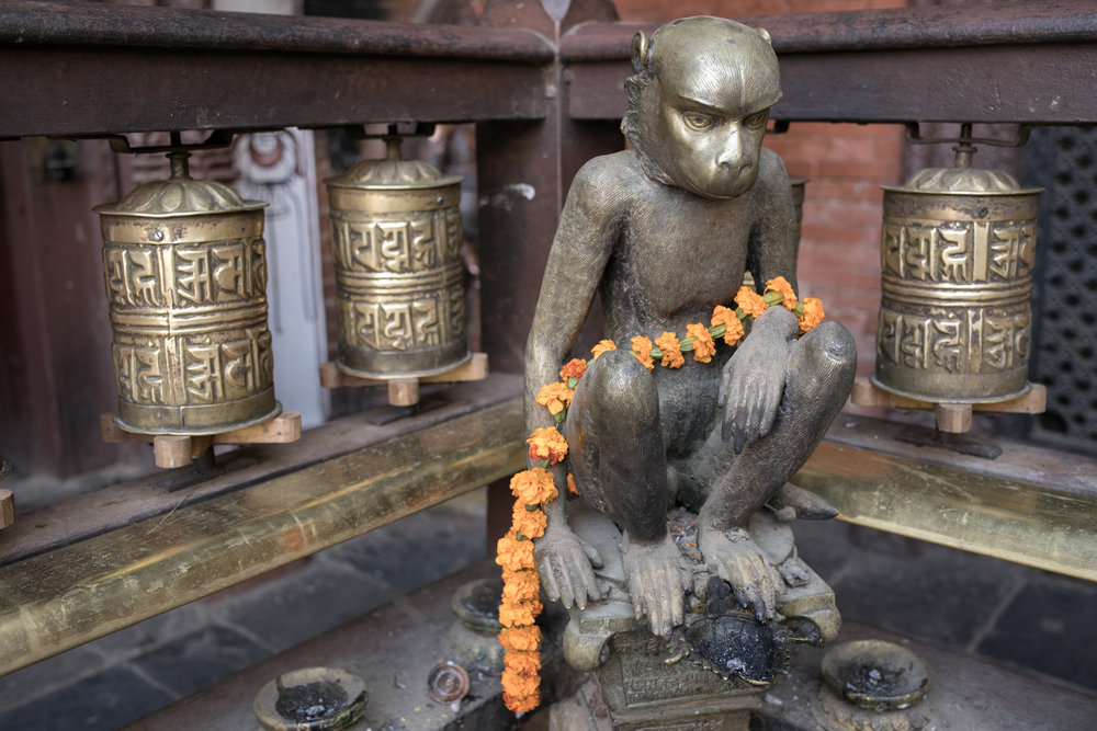 A monkey is wraped in a garland of merigolds in golden temple
