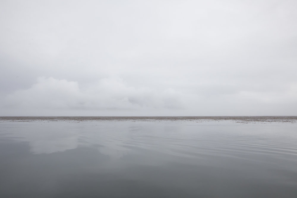 In the evening and early morning we heard fog horns echoing off of the water.  Our third day began draped in a thick grey-white fog.  The water was calm and we set out along the coast towards Idaho Inlet.