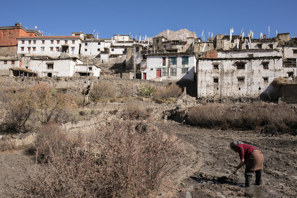 The town of Jharkot.  Here the houses looked old, but well cared for. A woman plows her field.