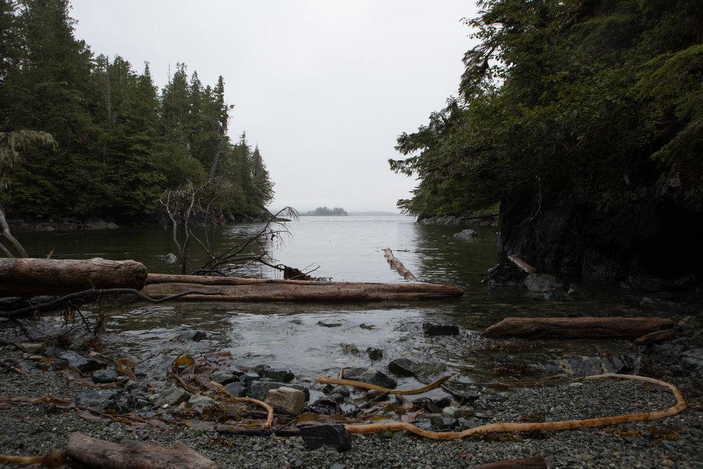 Douglass Island, Thompson Passage.