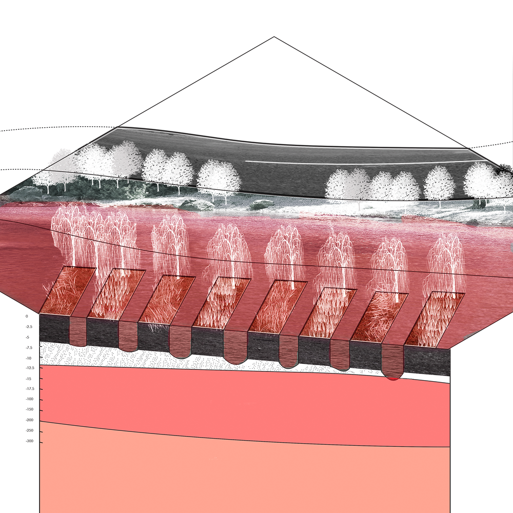 z_AXON_Aquaculture.png