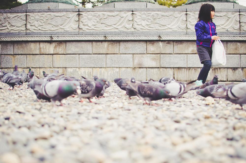 japanblog-21.jpg