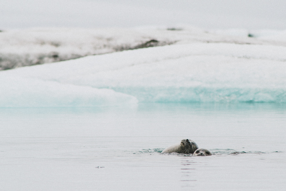 icelandblog-122.jpg