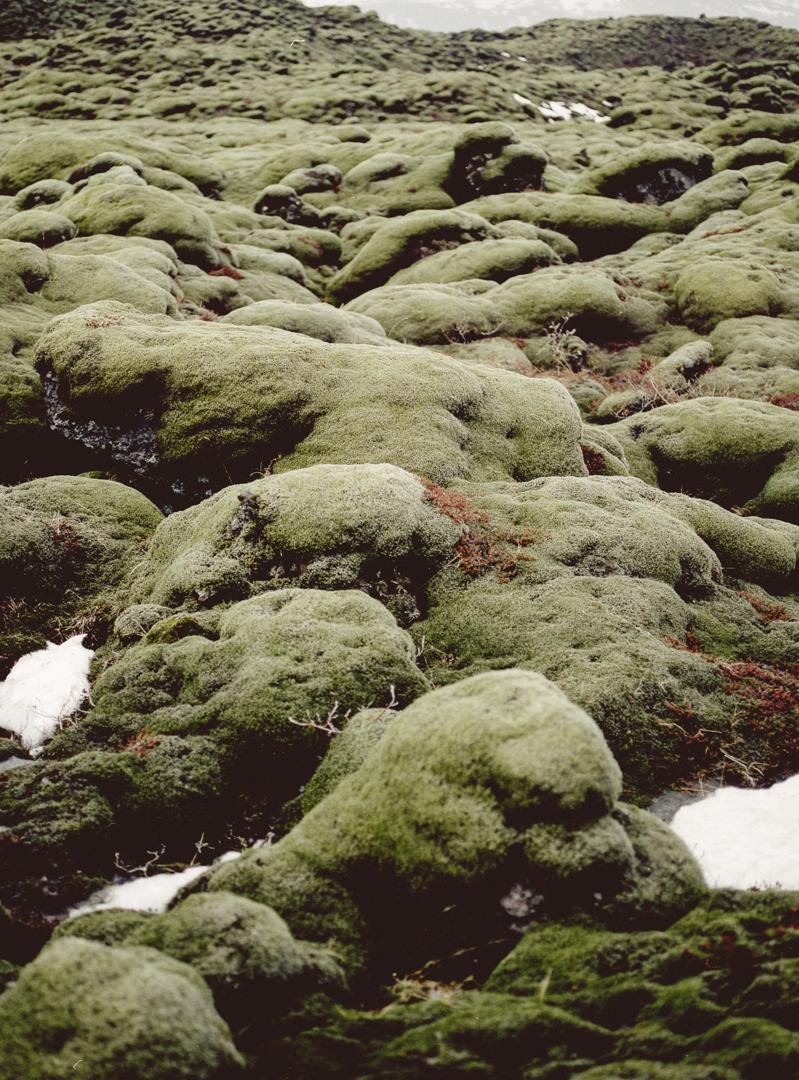 icelandblog-140.jpg