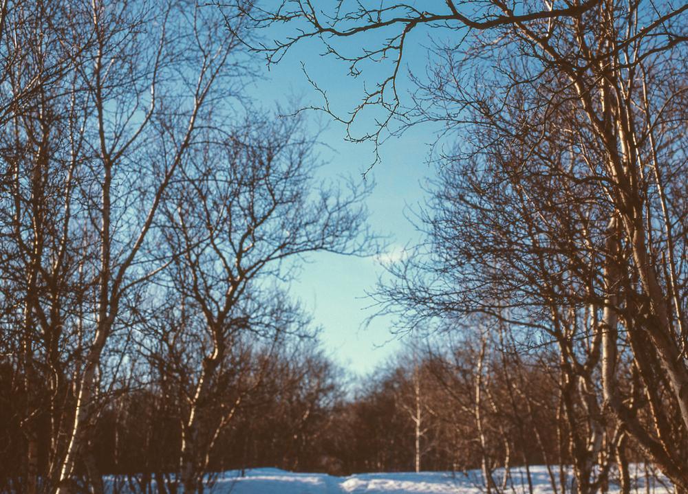 icelandblog-169.jpg