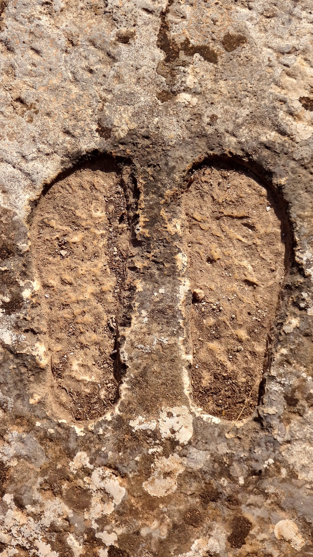 Punic or Roman footprints in the concrete.