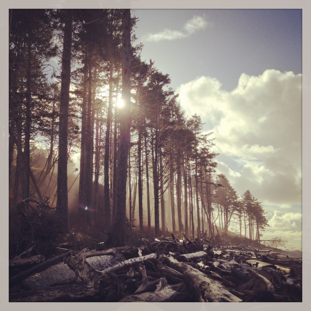 I learned about an amazing place called Kalaloch Lodge on the Olympic Peninsula in Washington. I spent a couple days up there exploring. This photo is from Ruby Beach. I can't wait to get back there.