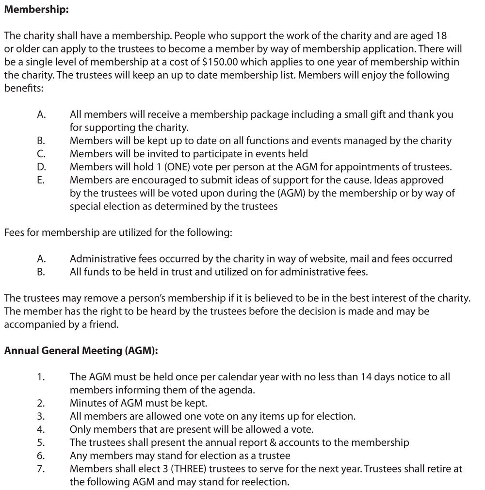 PROjectMedia Constitution-3.jpg
