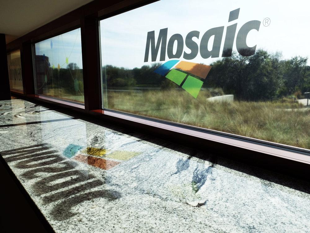 creativemccoy-design-mosaic-enviromental-4.jpg
