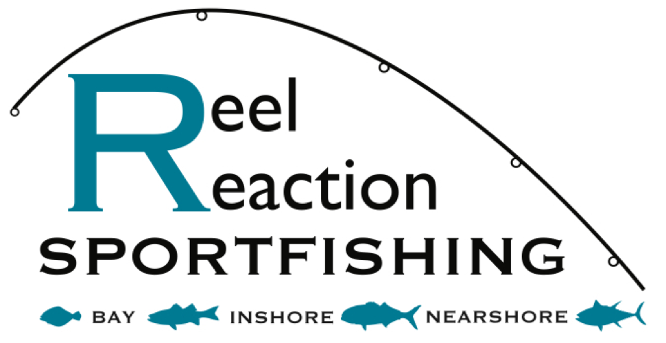 Reel Reaction Sportfishing - Barnegat Light Charter Fishing