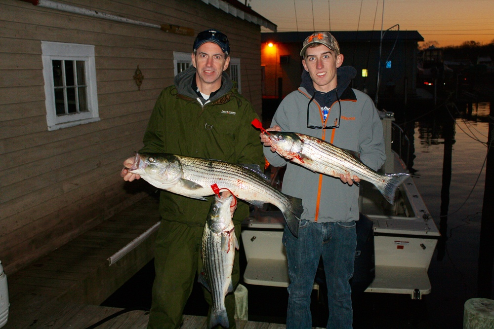 Striped bass charter eric hansen and son brien reel for Barnegat inlet fishing report