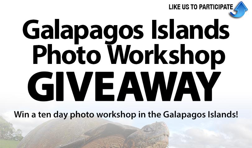 MWS-Galapagos-Giveaway-Blog.jpg