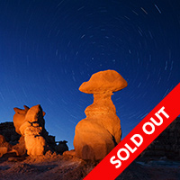 Wild Utah Photo Safari November 2014