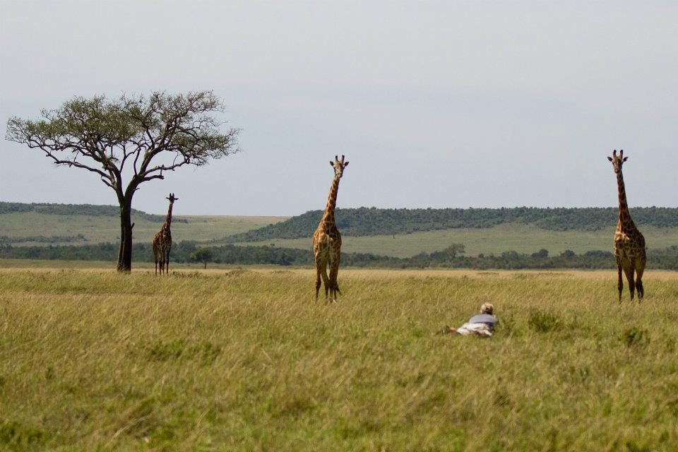 Andy - Giraffes 2 - VW-XL.jpg