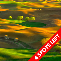 The Palouse June 2015