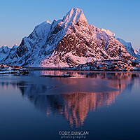 norway - lofoten and whales January 2016